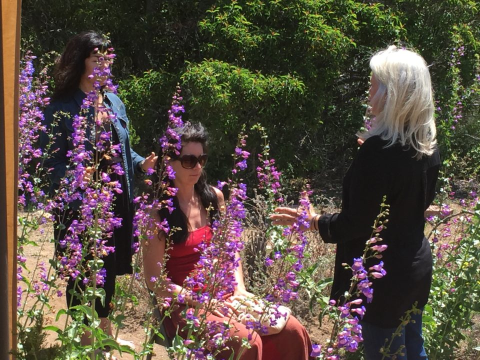 Energy Balancing During the 2016 Subtle Energy Retreat in San Diego