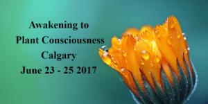 Awakening to Plant Consciousness web logo